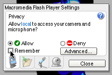 Flash Movie settings window